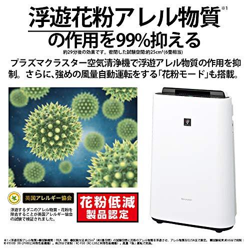 https://image1.rank-king.jp/article/original/3981.jpg?time=のサムネイル画像